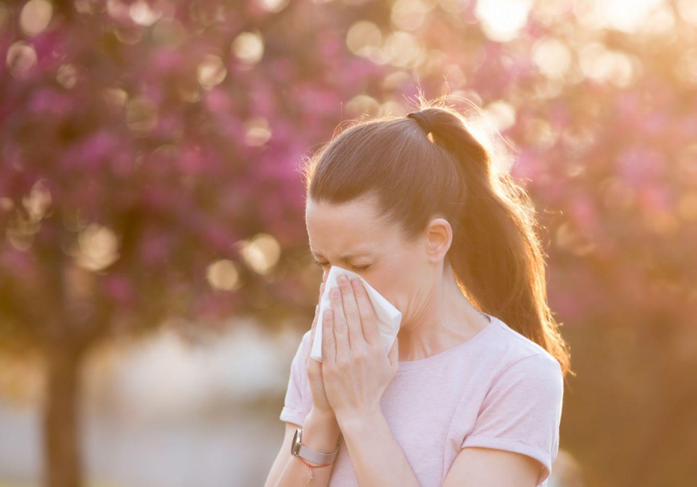 Allergiesaison