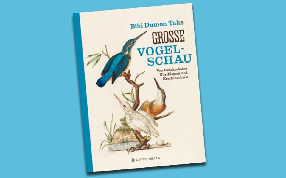 Buchtipps: Die besten Sachbücher für Kinder