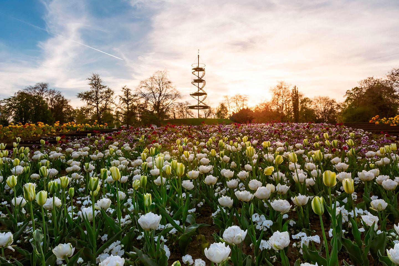 Höhenpark Stuttgart