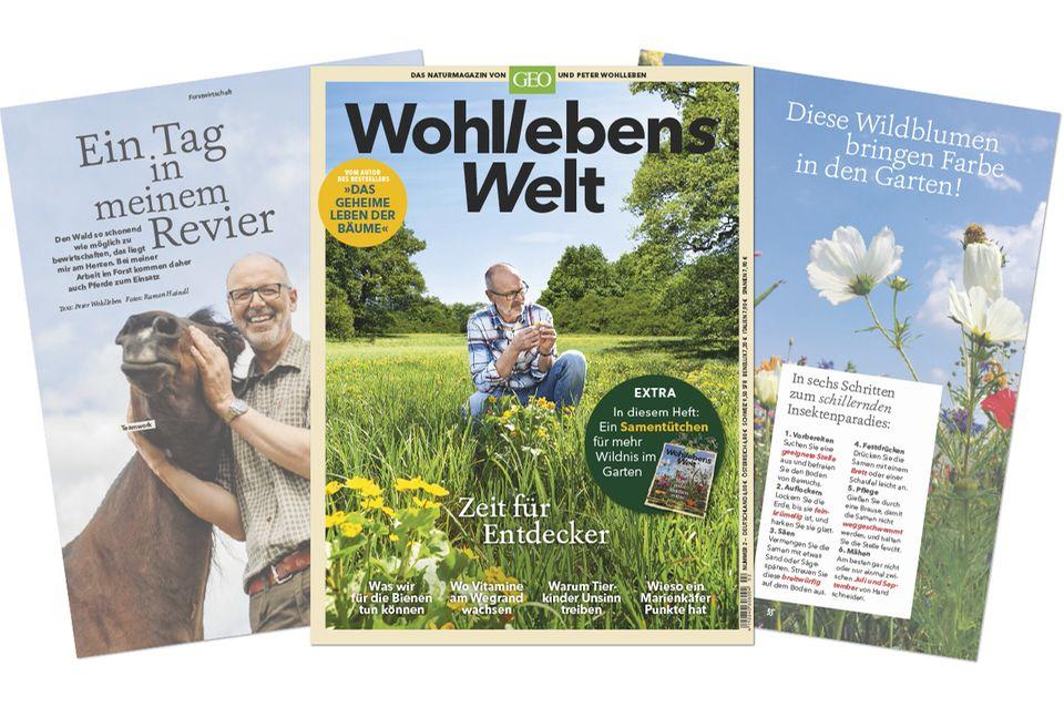 """Blick ins aktuelle Heft: """"Wohllebens Welt"""" im Sommer 2019 hat 132 Seiten und kostet 6 Euro"""