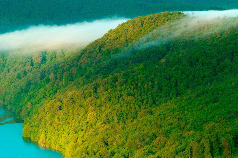 Nationalpark Kellerwald Edersee Germany
