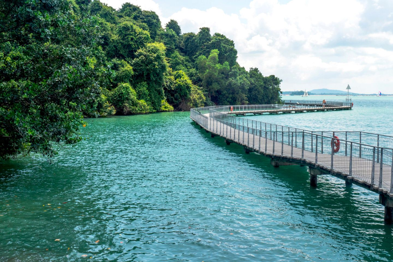 Chek Jawa Wetlands auf Pulau Ubin
