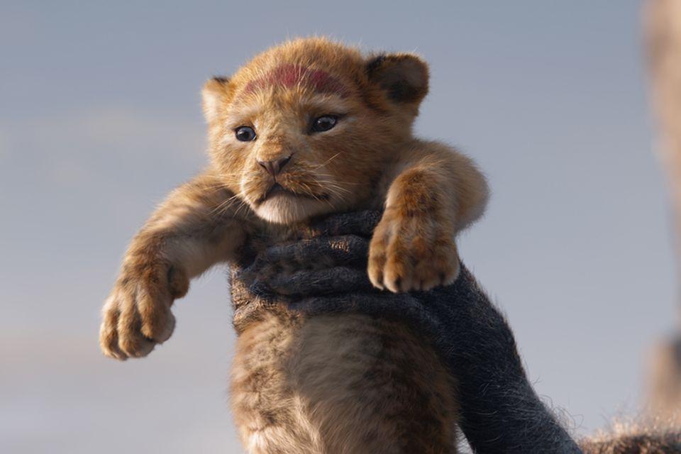Der König der Löwen - Simba