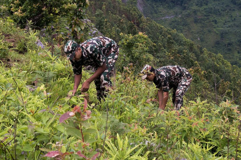 Tatkräftige Unterstützung bekommt die Gemeinde bei der Aufforstung außerdem durch einen Trupp junger Militärs