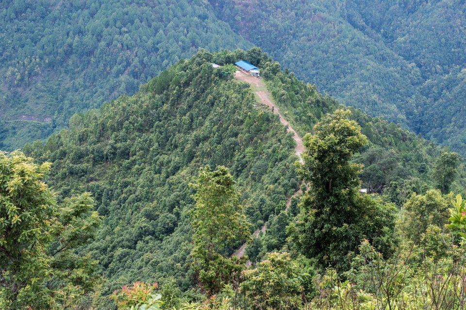 Nepal: Diesen Hügel haben die Bewohner/-innen von Sunaulo Bazaar im Jahr 2010 aufgeforstet – 2018 ist er wieder von Wald bedeckt