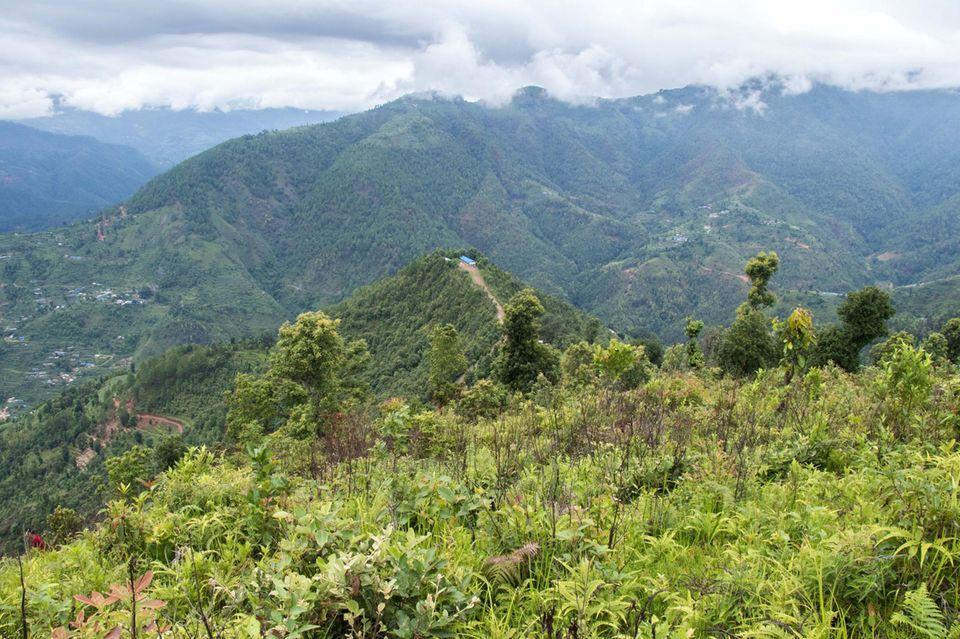 """Der Name des Aufforstungsortes, Sansari Danda, bedeutet """"Hügel zur Welt"""""""