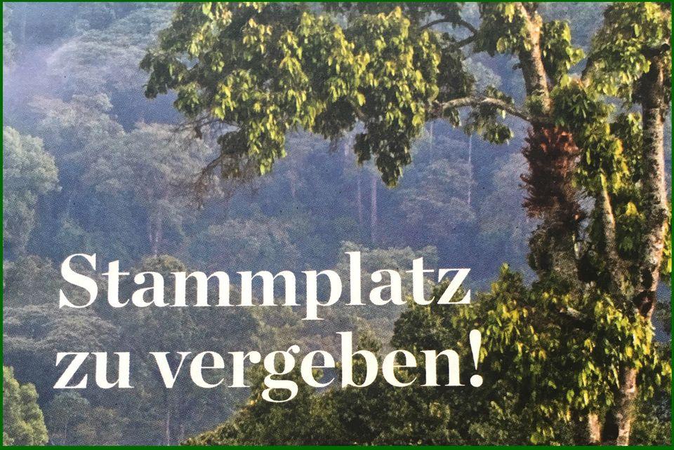 FLYER von GEO schützt den Regenwald e.V.