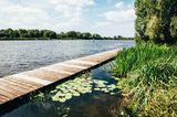 Dove-Elbe