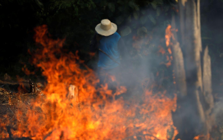 Amazonas Waldbrand