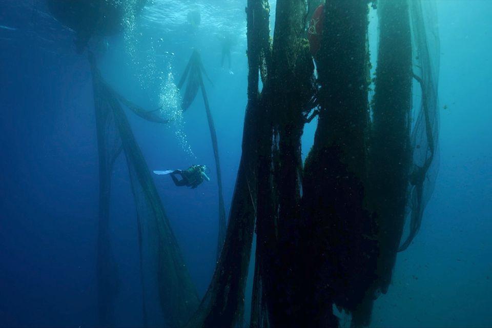 Geisternetze im Mittelmeer
