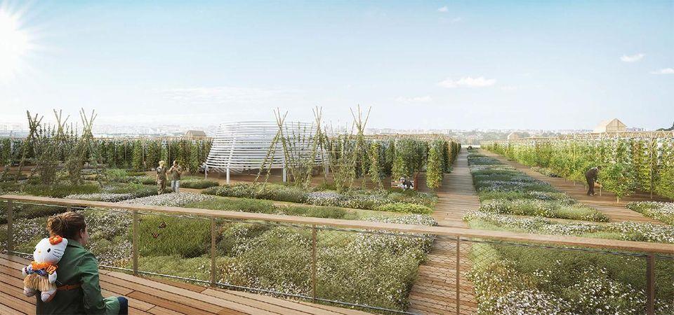 Rooftop-Farm: In den vertikalen Gärten sollen täglich bis zu 1000 Kilogramm Obst und Gemüse produziert werden