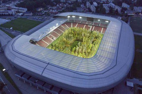 Bäume im Stadion von Klagenfurt