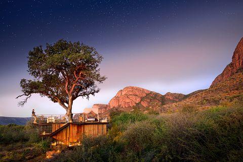Thabametsi Treehouse