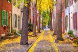 Herbstliche Straße in Philadelphia