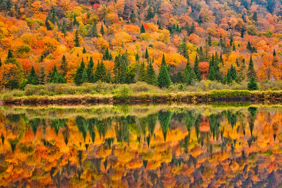 Jacques-Cartier National Park im Herbst