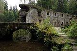 Die Mühle Dolský Mlýn