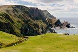 Hermaness Nature Reserve, Unst Isle, Shetland Islands