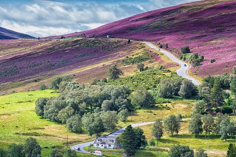 Cairngorms National Park, Schottland