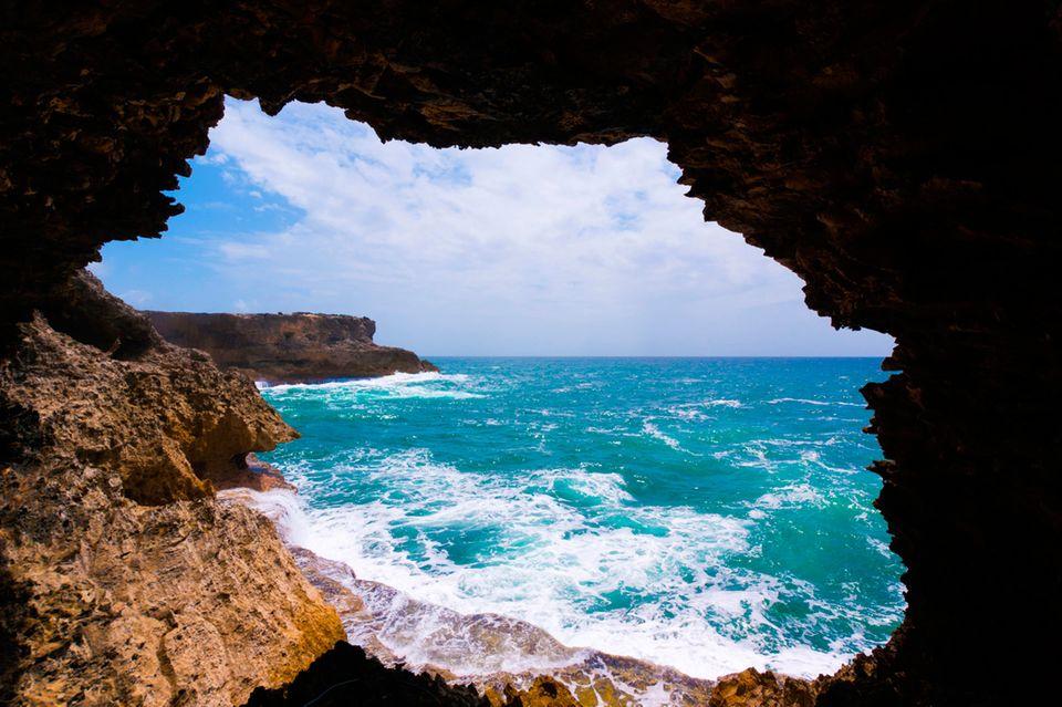 Barbados, Animal Flower Cave