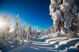 Hemsedal, Norwegen
