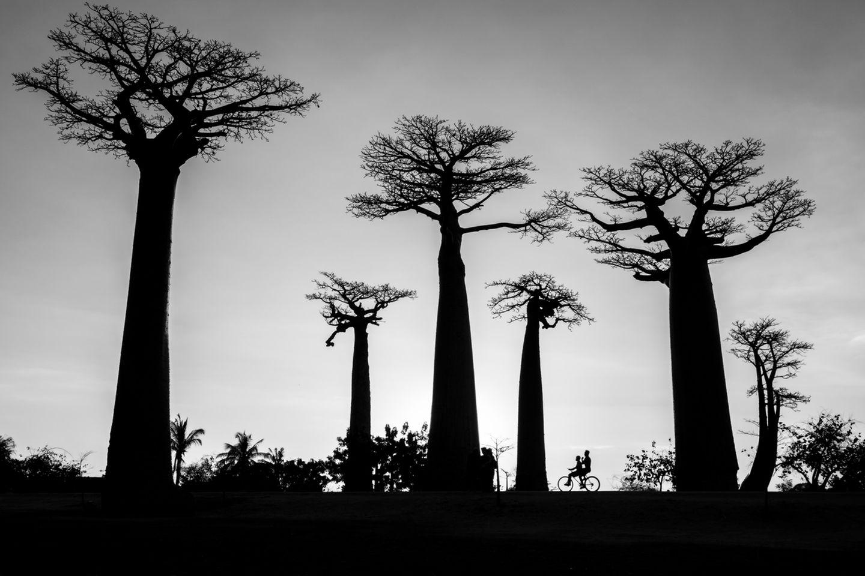 Fotopreis: 15 faszinierende Bilder von Reisen in die Natur - Bild 14