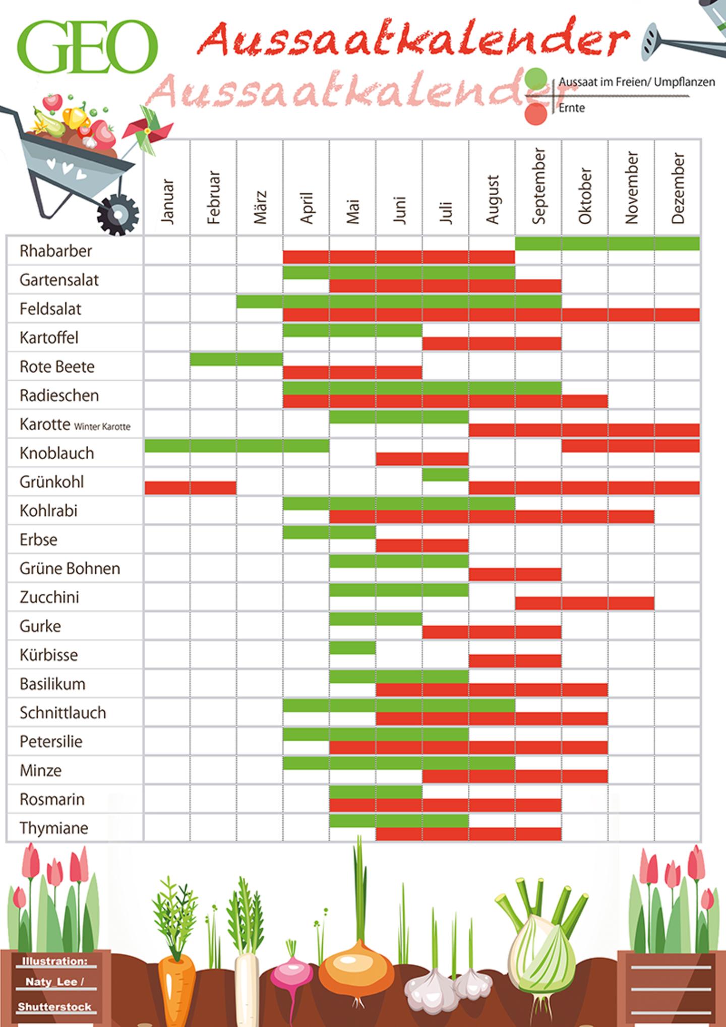 GEO Aussaatkalender