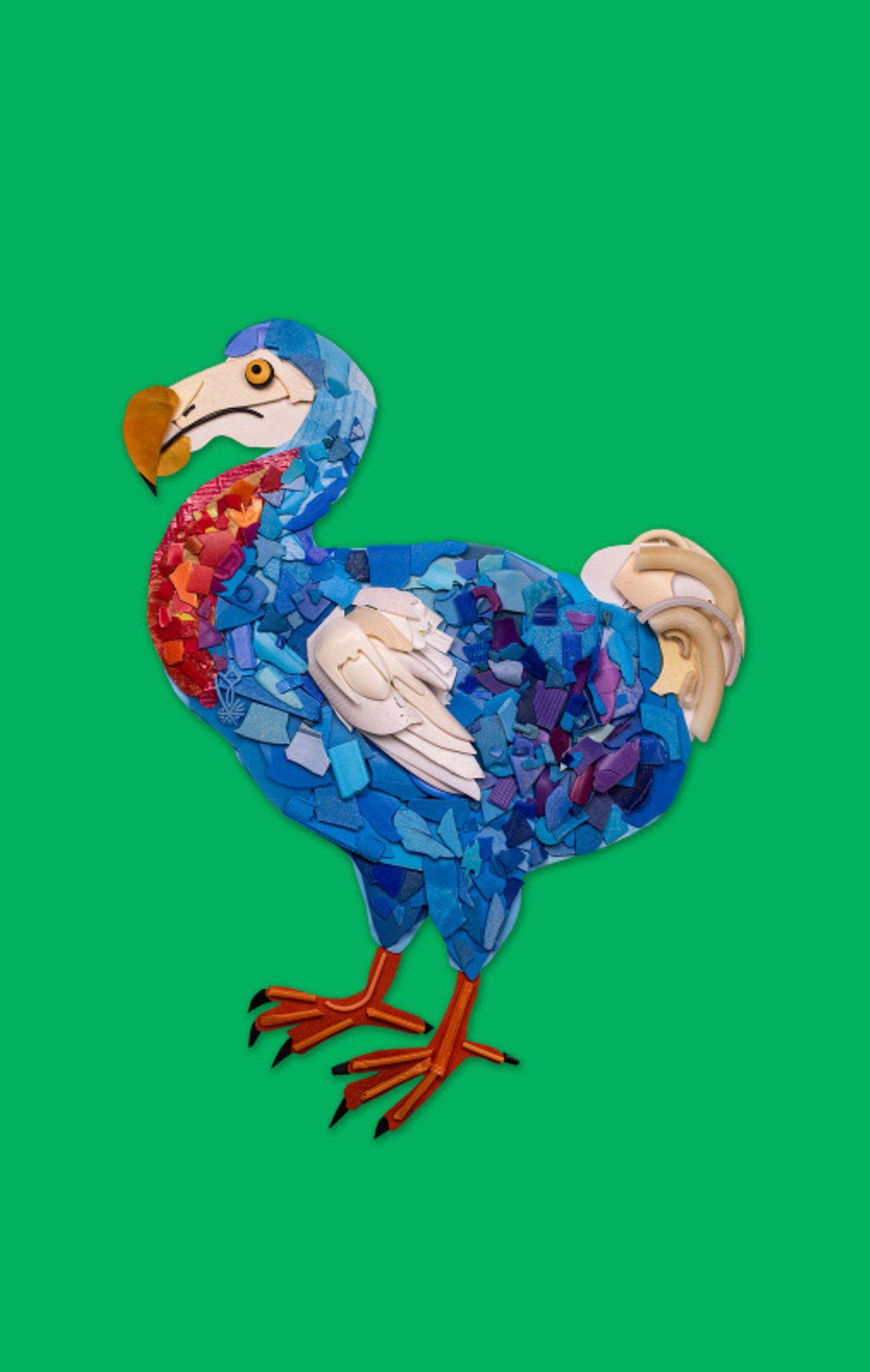 Der Dodo