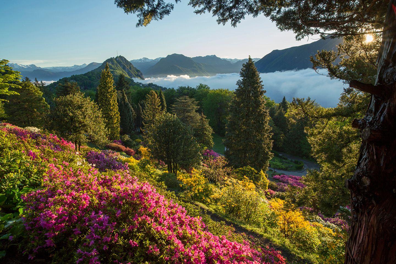 Parco San Grato, Schweiz