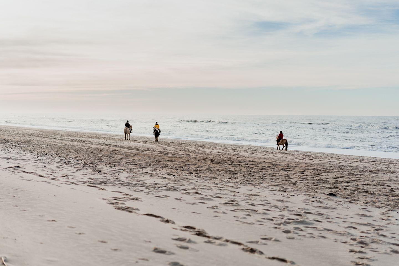 Für Tierfreunde: Ausreiten am Strand