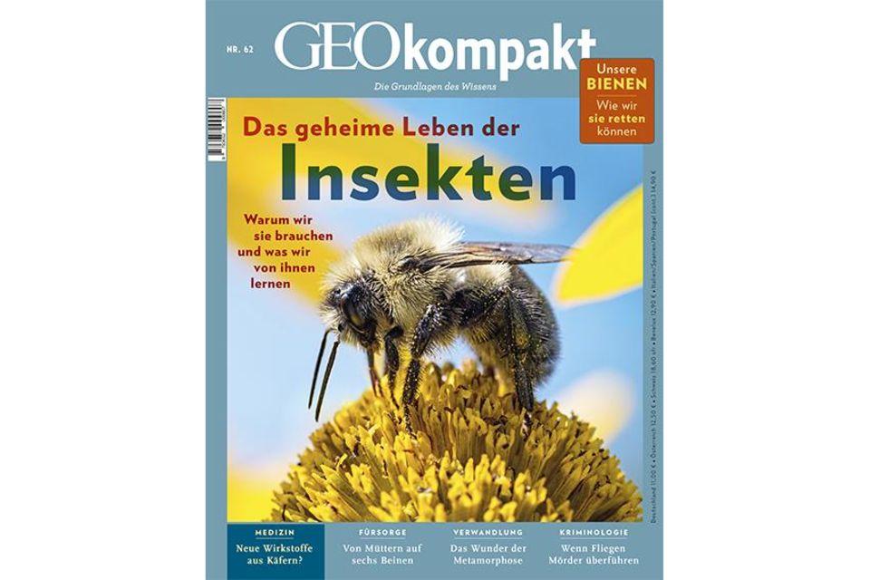 GEO KOMPAKT Nr. 62: GEO KOMPAKT Nr. 62 -  Das geheime Leben der Insekten