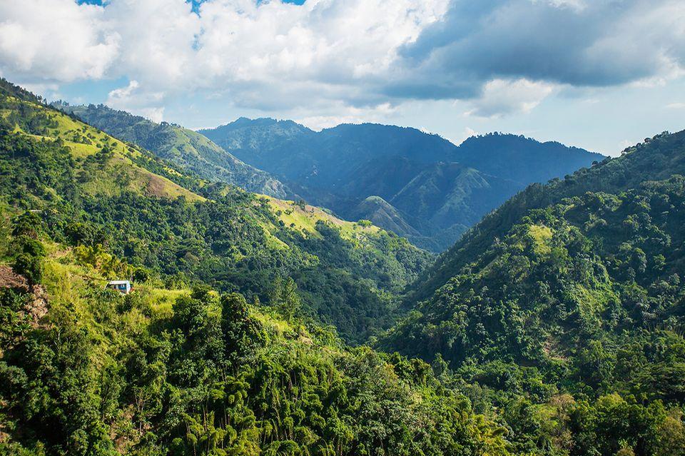 Blaue Berge, Jamaika