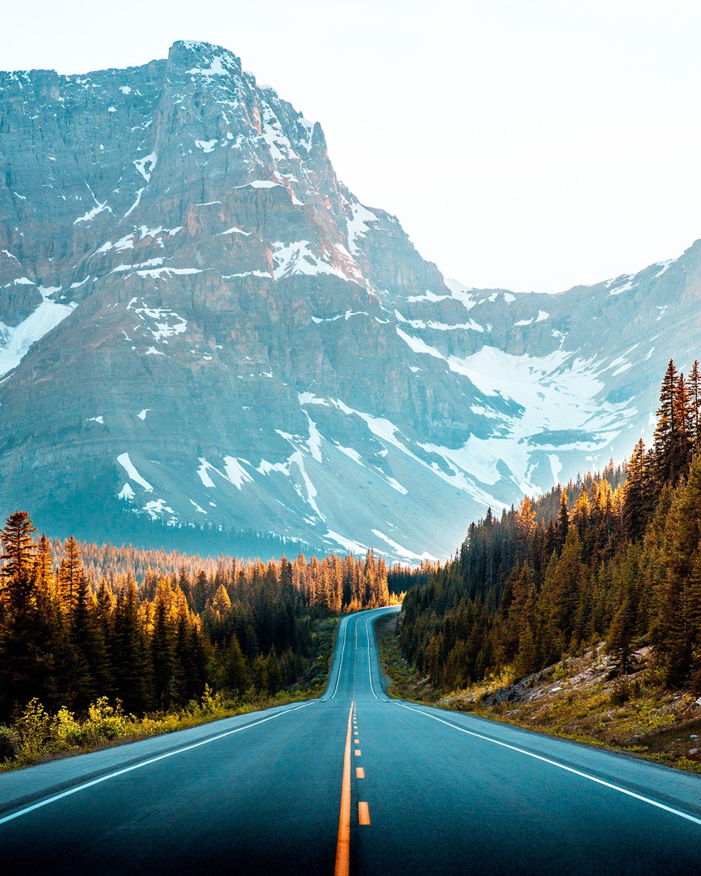 Banff Nationalpark Icefields Parkway