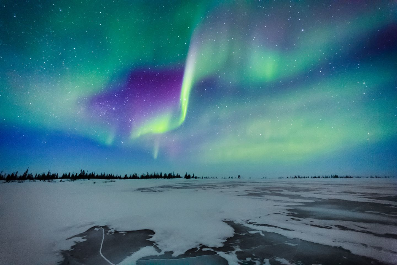 Corona: In klaren Winternächten zeigen sich die Polarlichter über dem kanadischen Churchill. Per Webcam lassen sie sich nun auch vom Sofa aus verfolgen