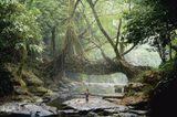 Indigene Architektur: So bauen Menschen seit Jahrtausenden mit der Natur