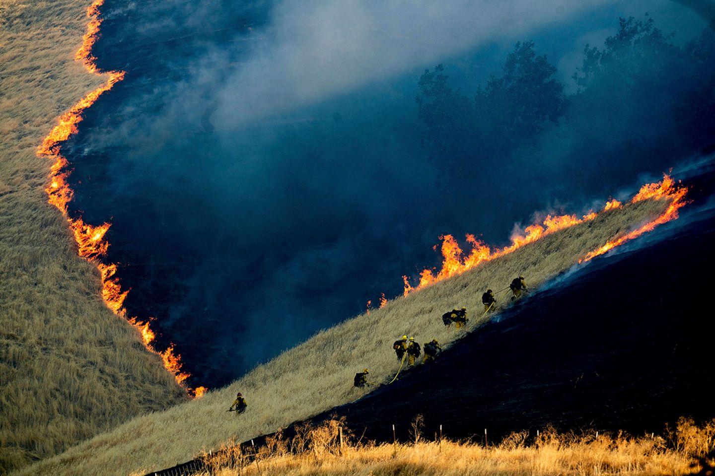 World Press Photo : Pressebilder des Jahres: Das sind die besten Natur- und Umweltfotos - Bild 2
