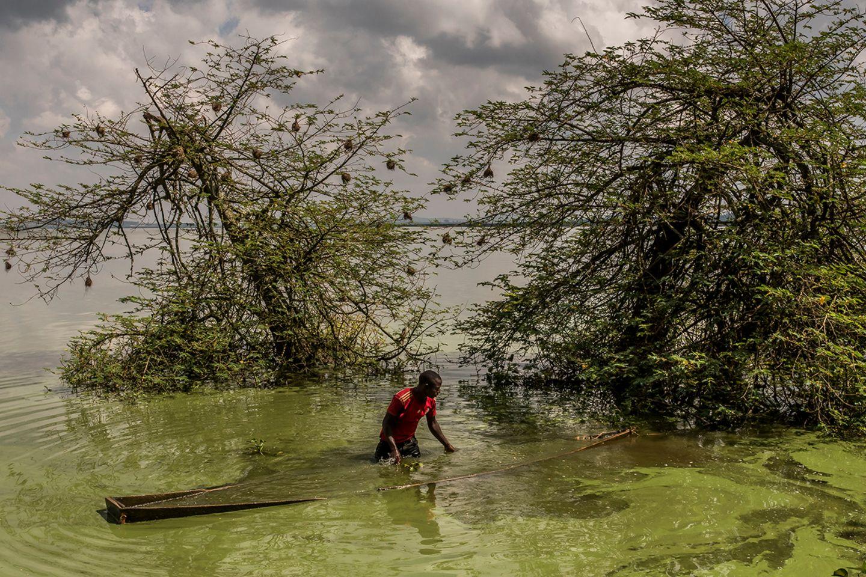 World Press Photo : Pressebilder des Jahres: Das sind die besten Natur- und Umweltfotos - Bild 3