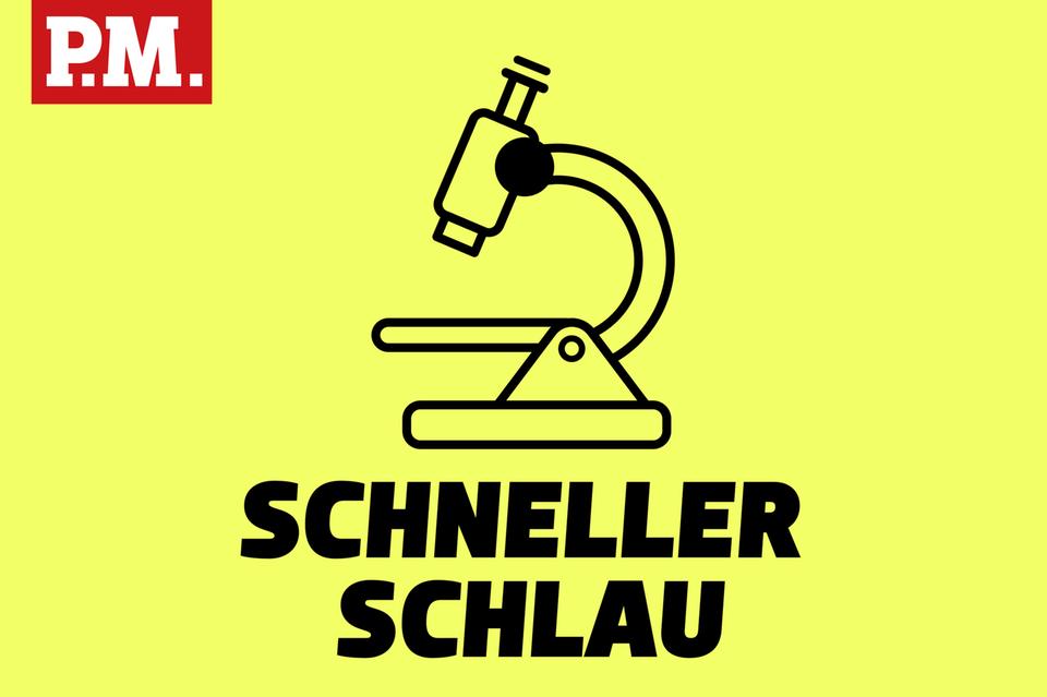 Kurz und knackig: Schneller schlau - der tägliche Podcast von P.M.