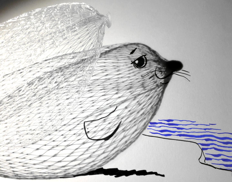 Der Seehund und das Plastiknetz
