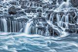Fotopreis der GdT: Naturfotograf des Jahres: Das sind Gewinnerbilder - Bild 7