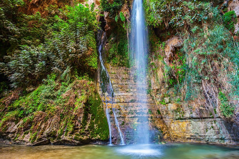 Grün und voller Leben präsentiert sich die En Gedi Oase im Hinterland des Toten Meeres. Sehr beliebt ist eine Wanderung zum Schulamit-Wasserfall