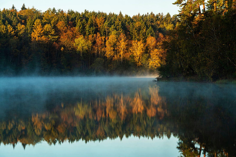 Pinnsee, Naturpark Lauenburgische Seen