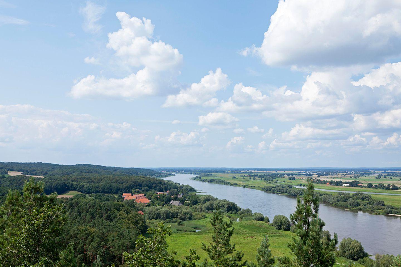 Elbe vom Aussichtsturm Kniepenberg, Naturpark Elbufer-Drawehn