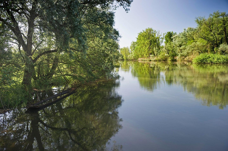 Naturschutzgebiet Taubergießen