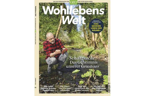 Wohllebens Welt Nr. 06/2020: Schatzsuche: Das Geheimnis unserer Gewässer
