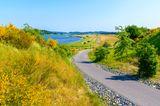 Platz 4: Ostseeküsten-Radweg
