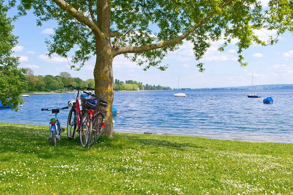Platz 10: Bodensee-Radweg