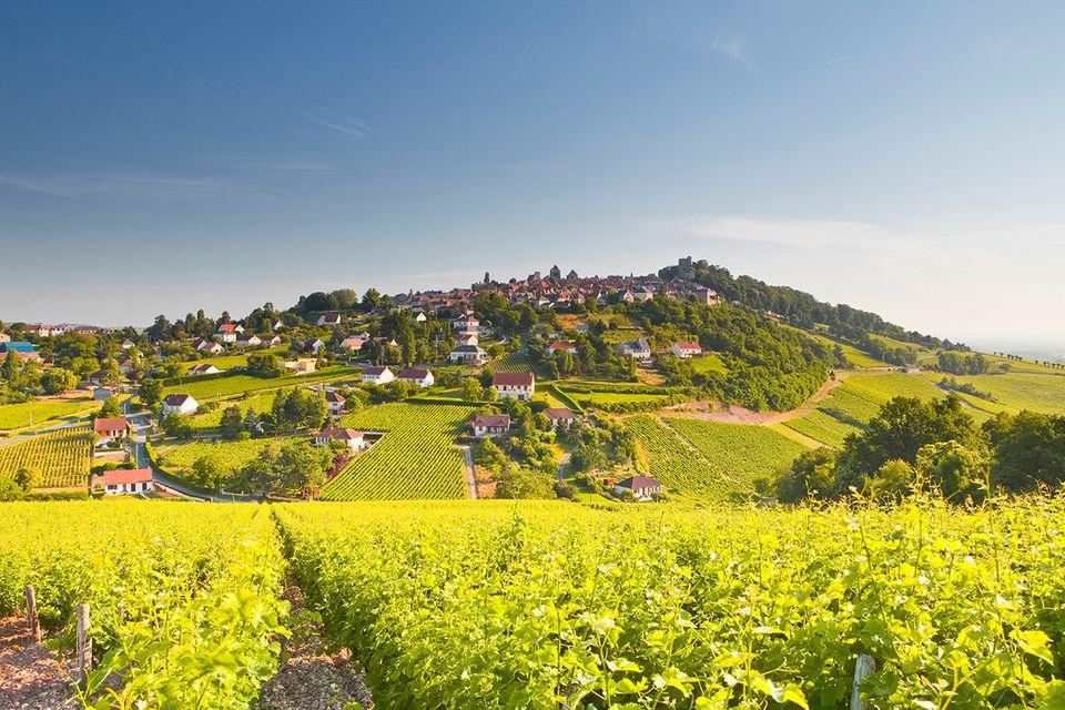 Sancerre : Erhaben auf einem Hügel über Loire liegt der hübsche Ort Sancerre
