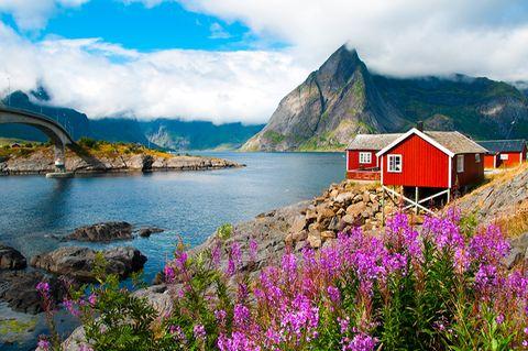 Lofoten: Raue Schönheit am Polarkreis