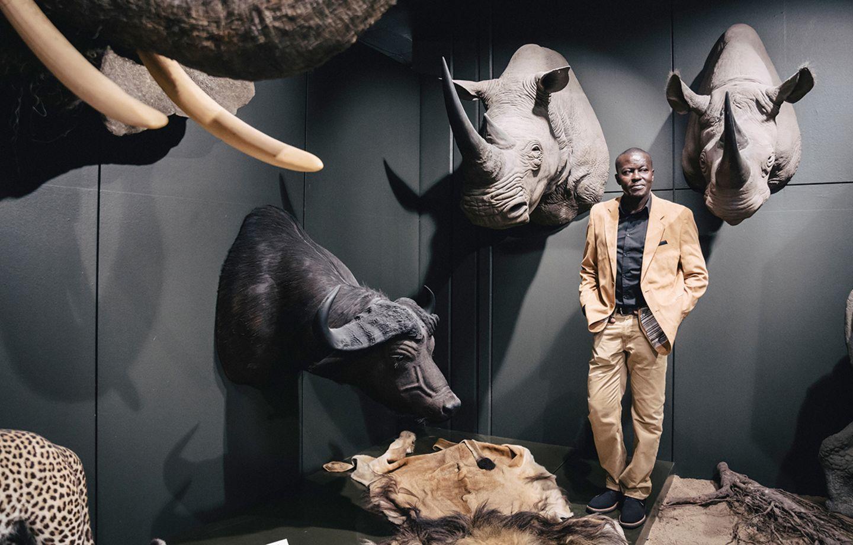 Umweltschutz in Afrika: Den Büffel im Zoologischen Museum Hamburg hat einstmals ein Großwildjäger erlegt. Noch immer verkaufe die Tourismusbranche Afrika als ein koloniales Erlebnis, sagt Ogada