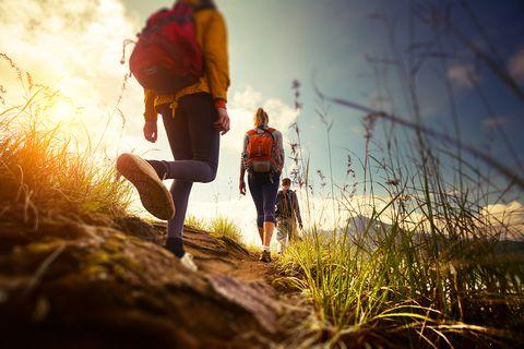 Bewegung: Wandern hält die Knie schonend in Bewegung. Bei Beschwerden sollten steile Abstiege aber vermieden werden